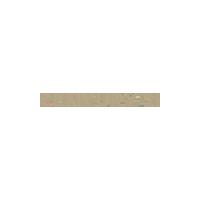 Century 21 New Logo