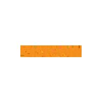 Visteon Logo Small