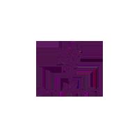 Younique Logo Small