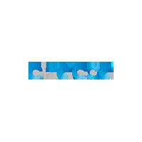 Endesa Logo Small