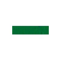 Oppo New Logo