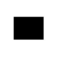 Suzano Logo